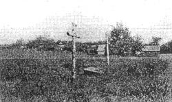 Могила тютюнниківців, розстріляних більшовиками в 1921 р. Село Базар Народицького р-ну.