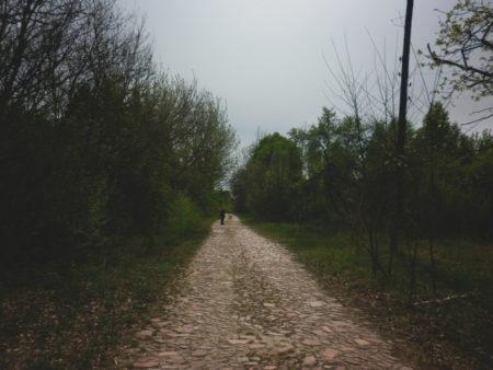 Кам'яна дорога у Журбі не міняється, лише з роками стає вужчою